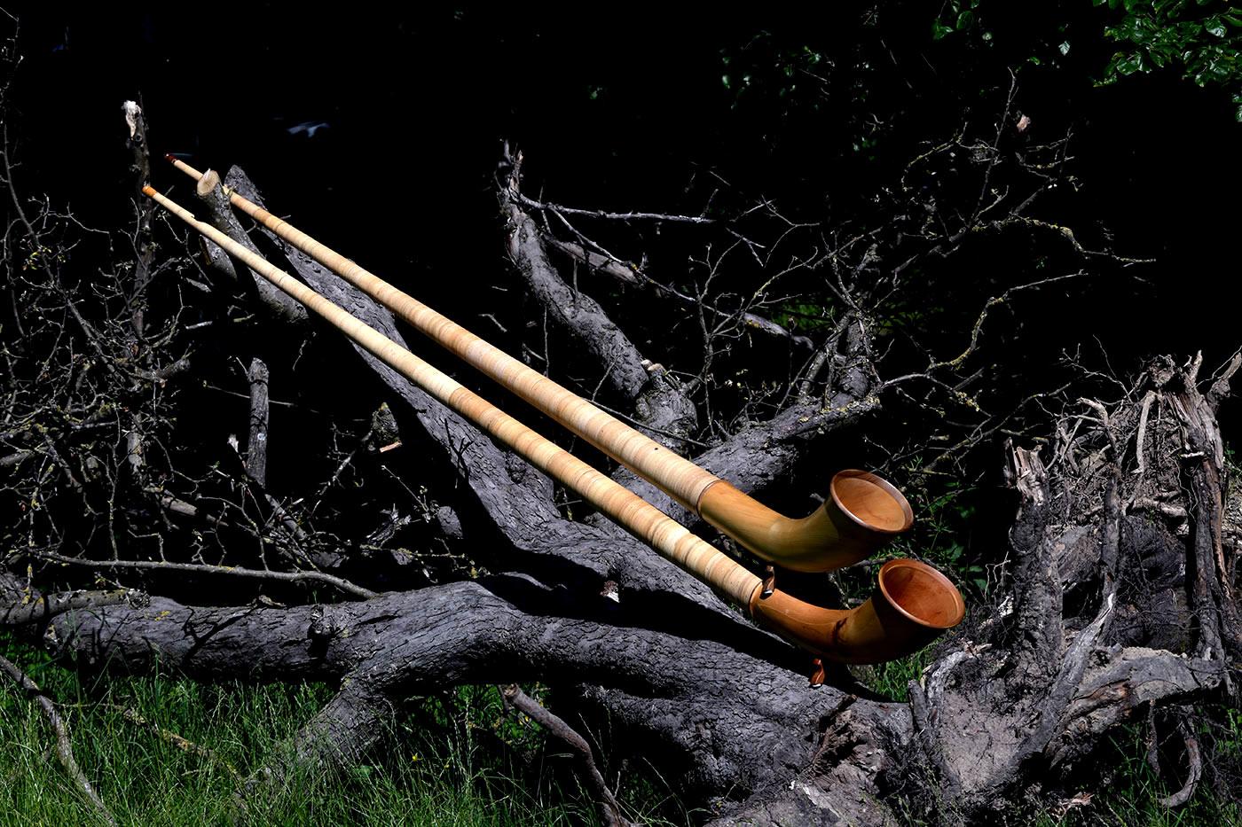 Alphorn vierteilig auf Baumstrunk